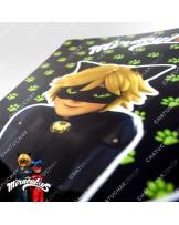 A4 Folder (Green Balck) - Miraculous Ladybug