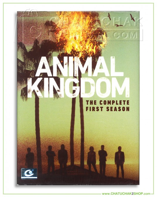 Animal Kingdom : The Complete 1st Season DVD Series (3 discs)