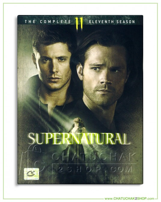 Supernatural : The Complete 11th Season DVD Series (6 discs)