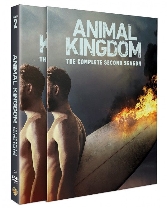 Animal Kingdom: The Complete 2nd Season DVD Series (3 discs)